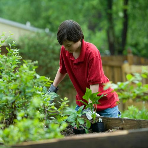 child garden.png